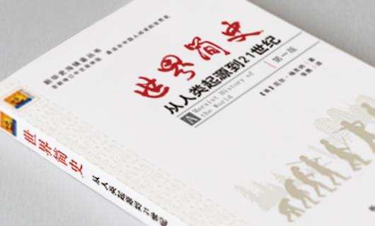 新华史海镜鉴系列丛书封面设计(二)